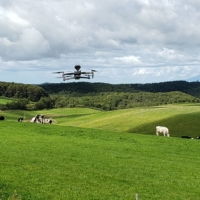 A drone emits sounds from a distance so as not to scare the cows.  | NTT DOCOMO INC.