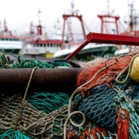 While the U.K. has clawed back some of its fishing rights, those catching the fish may now find themselves mired in paperwork when trying to export their catches. | SANDER KONING / ANP / VIA AFP-JIJI