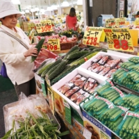 A customer examines vegetables in a supermarket in Tokyo in July 2019.    KYODO