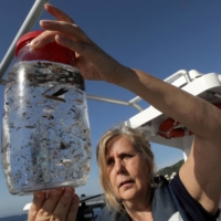 Maria-Luiza Pedrotti, CNRS marine biologist specialized in micro-plastics, looks at sea sample taken from the Mediterraneean Sea on a coastal research vessel as part of a scientific study about microplastics damaging marine ecosystems, near Villefranche-Sur-Mer, France, in October 2018. New research has found the majority of microplastics in Arctic seawater are polyester fibres, suggesting households are polluting the oceans simply by washing their clothes. | REUTERS