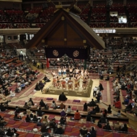 Sumo stables deserve more scrutiny after wrestler's shock retirement