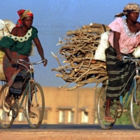 Women in Burkina Faso carry wood and sacks of food on bicycles. About a quarter of the Earth's land area is in a bad condition due to natural processes such as erosion and human practices like deforestation and overgrazing, scientists say. | REUTERS
