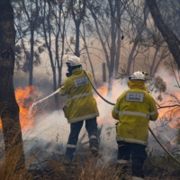 Crews battle a bush fire in Red Gully, Western Australia. | DEPARTMENT OF FIRE AND EMERGENCY SERVICES / VIA REUTERS