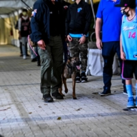 A K-9 handler walks with a specially trained dog that detects the coronavirus in people as it screens fans at American Airlines Arena prior to an NBA game between the Heat and Clippers on Thursday in Miami. | AFP-JIJI