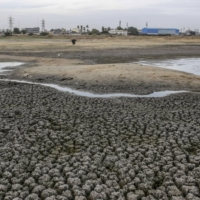 The dried-out Porur Lake in Chennai, on July 5, 2019. The city receives 90% of its rainfall in the northeast monsoon in November and December.  | BLOOMBERG