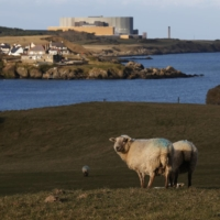 Wales bids for Hitachi nuclear site, report says
