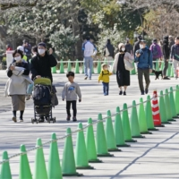 Tokyo's Ueno park has set up dividers for social distancing. | KYODO