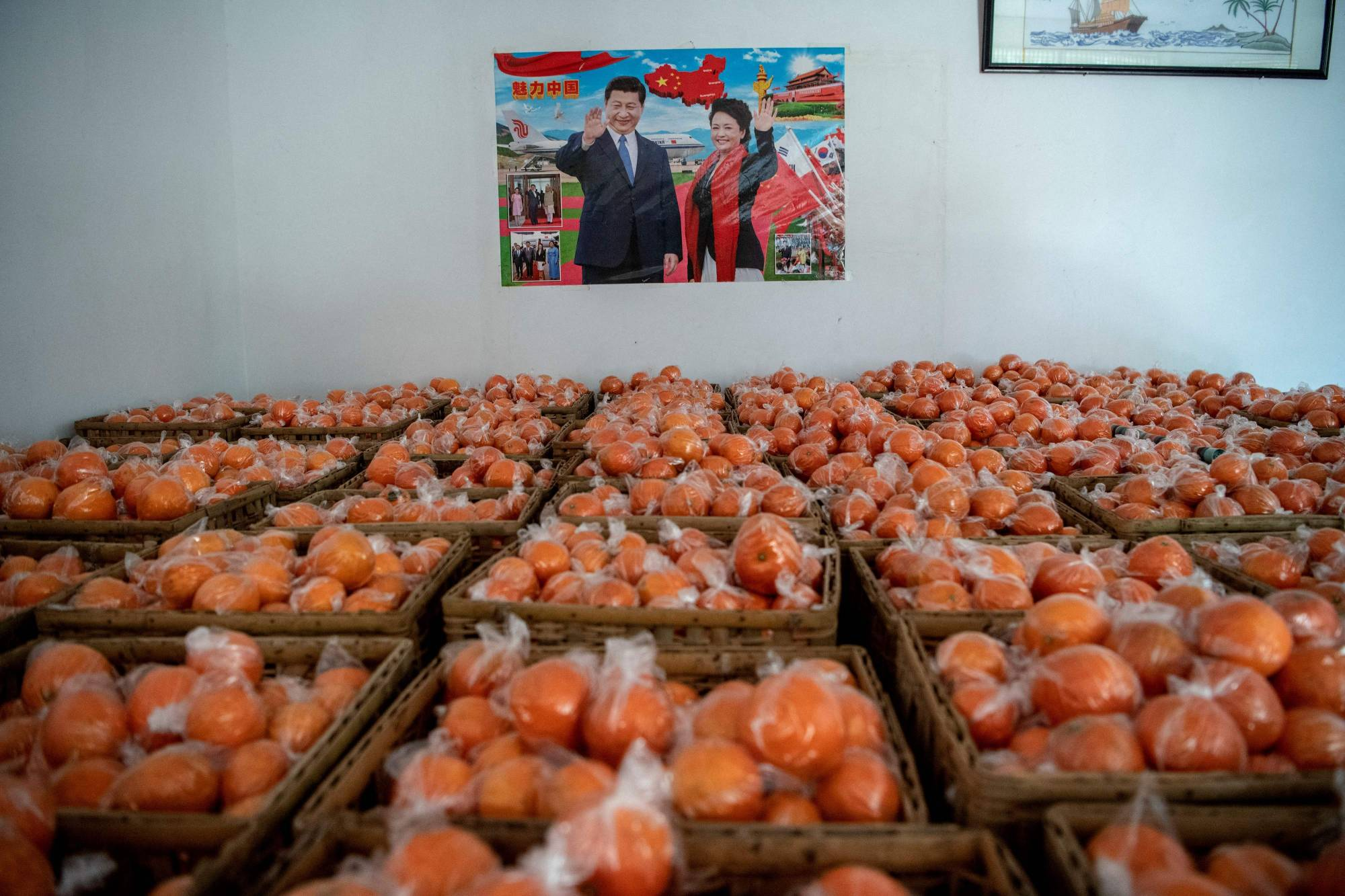 Crates of oranges are seen in front of a poster of Chinese leader Xi Jinping at a warehouse in central China's Hunan province on Jan. 12. | AFP-JIJI