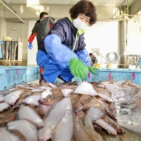 With return to normalcy in sight, Fukushima fishermen fear release of nuclear plant water