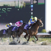 Over 160 involved in the horse racing industry, including 13 jockeys, have been found to have improperly applied for COVID-19 relief money offered to businesses. | KYODO