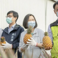 Pineapple diplomacy? China's Taiwan import ban prompts sales surge in Japan