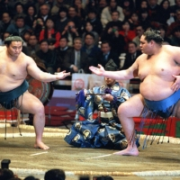 Fall of Azumazeki stable represents tragic loss for professional sumo