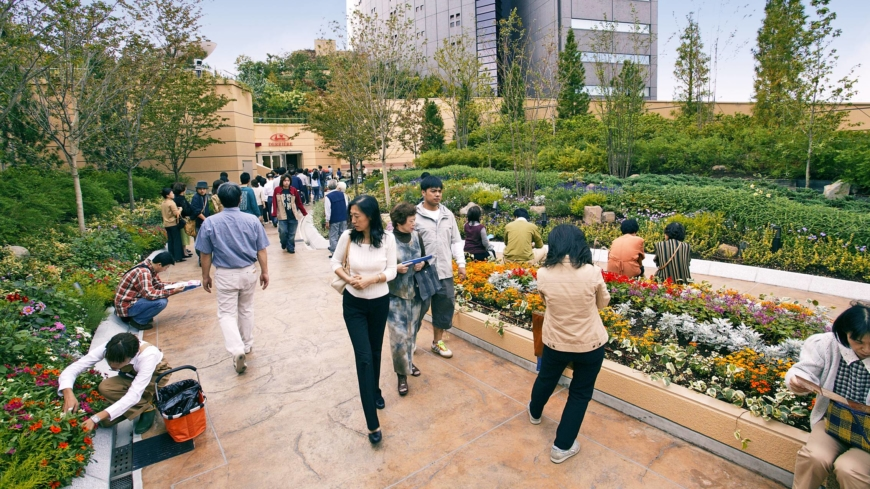 Unearthing Japan's home-grown solutions to urban greening