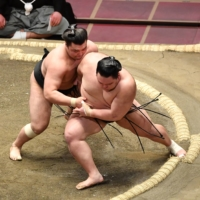 Terunofuji stays in lead pack as Asanoyama goes down on Day 7