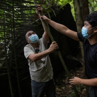Filipino bat ecologists Phillip Alviola and Kirk Taray set up a mist net near a bat roost on Mount Makiling in Los Banos, Laguna province. | REUTERS