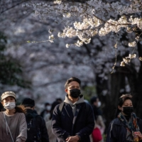 People walk underneath cherry blossoms in the Meguro district of Tokyo on Tuesday. | AFP-JIJI