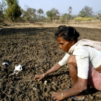India's 104 million indigenous people — also known as Adivasis, or 'original inhabitants' — make up less than 10% of the country's population, and are among its most impoverished. | REUTERS