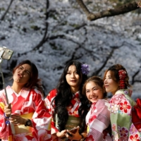 Kimono-clad women from Thailand take selfies among blooming cherry blossoms at Ueno Park in Tokyo on Saturday. | REUTERS