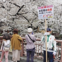Guards hold up placards asking people to refrain from viewing cherry blossoms near the Meguro River in Tokyo's Meguro Ward Sunday. | KYODO