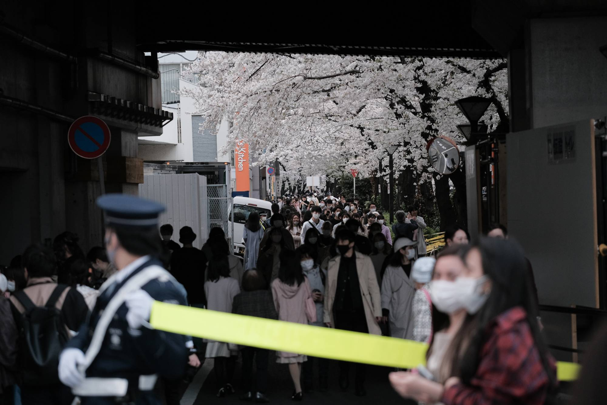 People walk past cherry blossom trees in bloom along the Meguro River in Tokyo on Saturday. | KYODO