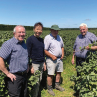 From right to left: John Tavendale, Chairman of NZ Blackcurrant Cooperative; Murray Stephens, former Chairman of NZ Blackcurrant; Eddie Shiojima, founder of Just The Berries PD Corp.; Alan Dobson, Consultant of NZ Blackcurrant | © JTBPD