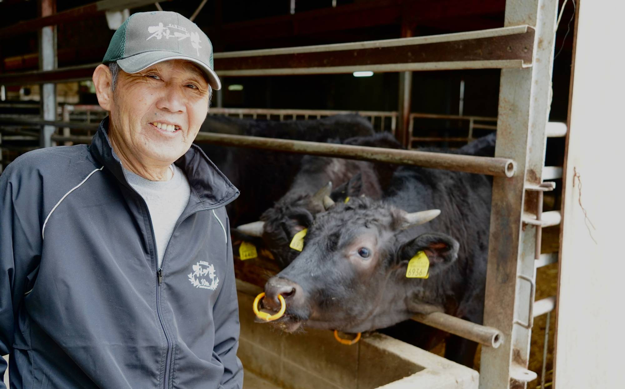 Island-grown, island-fed: Masaki Ishii supplements the feed of his 25-head herd of black wagyu cattle with the lees from Shodoshima's olive oil production. | ROBBIE SWINNERTON