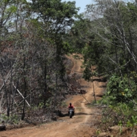 An illegal road made during the deforestation of the Yari plains | REUTERS