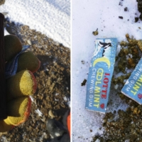 A can of Coca-Cola and packets of Lotte Co.'s Cool Mint chewing gum were discovered near Showa Station in Antarctica after more than 50 years.