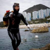 Ko Keum-sun, 69, carries seafood that she harvested in Busan, South Korea. | REUTERS