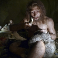 An exhibit shows the life of a Neanderthal family in a cave in the Neanderthal Museum in the northern town of Krapina, Croatia, in February 2010.