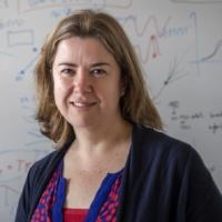 Julie Arblaster, professor in the School of Earth, Atmosphere and Environment at Monash University, is one of the most influential climate scientists in the world. | REUTERS