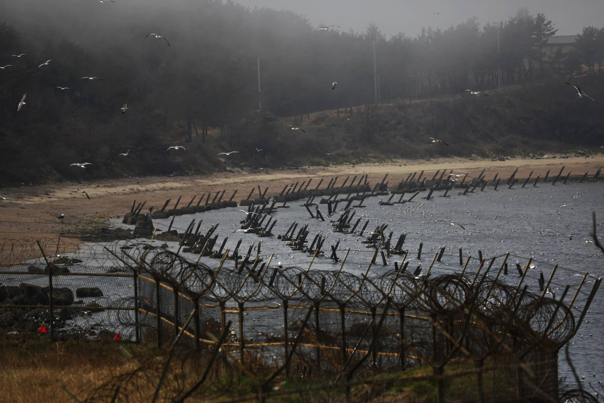 Anti-landing spikes on the island of Baengnyeong, which lies on the South Korean side of the Northern Limit Line in the Yellow Sea | REUTERS