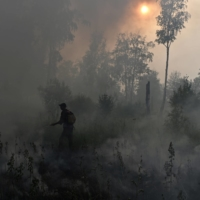 Arctic fires and thawing permafrost pose growing threat to climate, study says