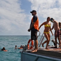 Tourists snorkel near the Great Barrier Reef in 2014. Facing a pandemic-induced labor shortage, the sun-drenched Australian state of Queensland began offering a bundle of cash to anyone willing to 'work in paradise.'    AFP-JIJI