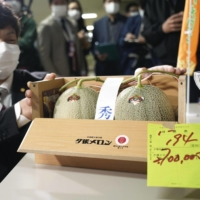 Iori Kage, president of Hokkaido Products Ltd., shows off a pair of Yubari melons the company purchased for ¥2.7 million in the first auction of this season, at a wholesale market in Sapporo on Monday. | KYODO