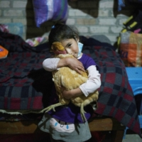 A girl hugs a chicken in her home, in Chota, Peru, on Wednesday.  | REUTERS