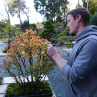 Adam Jones in the spacious grounds of his Tree House Bonsai nursery in the Ibaraki Prefecture district of Ami-Machi.   STEPHEN MANSFIELD