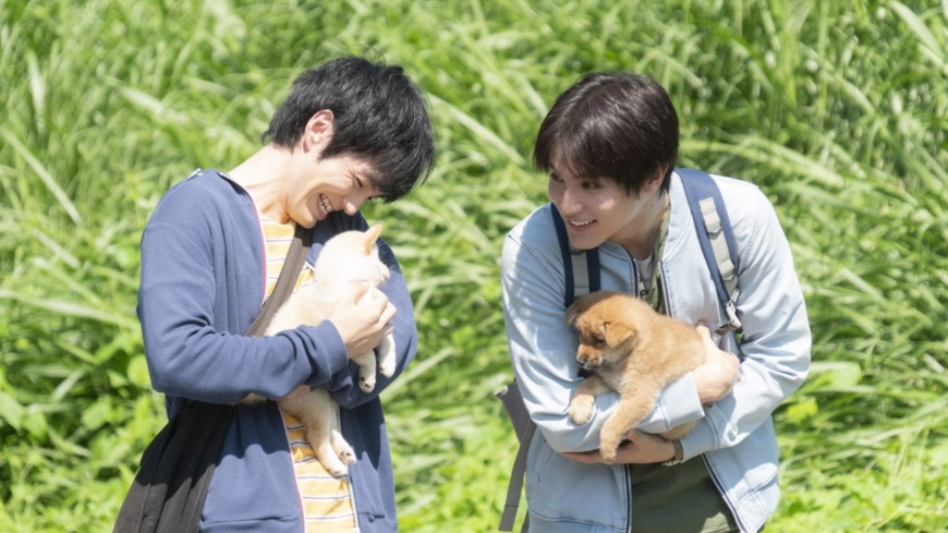 'Inubu: The Dog Club': Puppy love with a heavy dose of advocacy