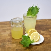 This shiso-lemon syrup adds a dose of sunshine to the gloomiest day