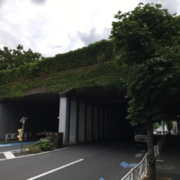 Sendagaya Tunnel in Tokyo is thought to be haunted. It was built underneath the cemetery located on the grounds of Senjuin temple.  | ALEX K.T. MARTIN