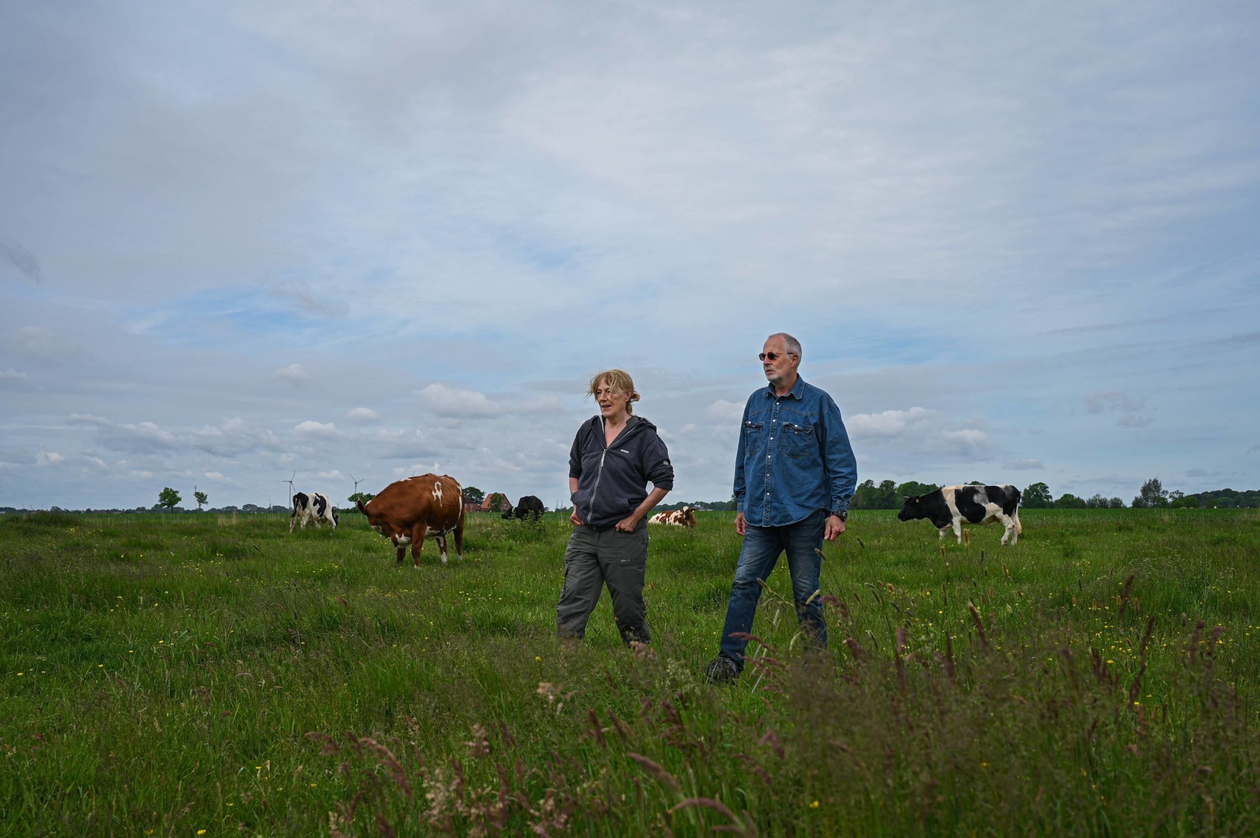 Karin Muck and Jan Gerdes visit the cows at Hof Butenland, an ex-dairy farm that's become a farm animal retirement home and symbol of veganism and coexistence of people and animals.   LENA MUCHA / THE NEW YORK TIMES