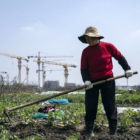 China's economic growth slows in second quarter from record pace