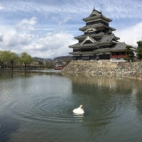 Three spots in Japan will make your transition back to travel an educational one