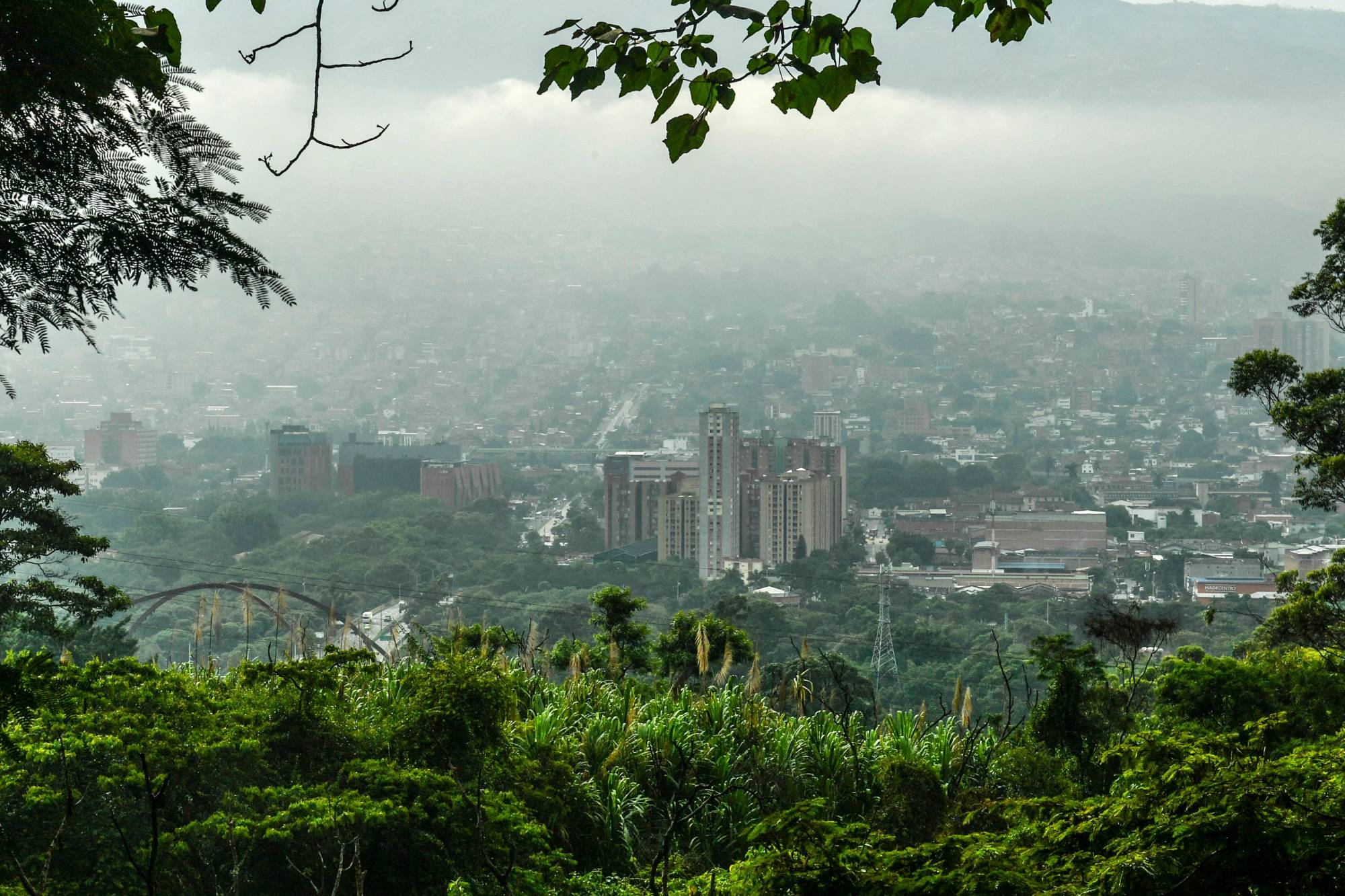 Medillin, in Colombia, has been awarded for its urban planning of so-called green corridors. | AFP-JIJI