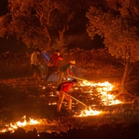 People try to extinguish a wildfire spreading in the village of Akcayaka, in Turkey's  Mugla province, on Friday.    AFP-JIJI