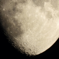 Japan research group to explore sustainable food source for lunar missions