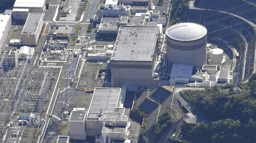 Safety review of reactor at Tsuruga nuclear plant halted over data tampering