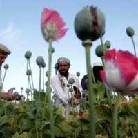 Guns, drugs and the Taliban: Afghanistan's heroin problem