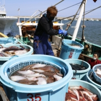 Japan's government plans to buy seafood if Fukushima water release affects sales