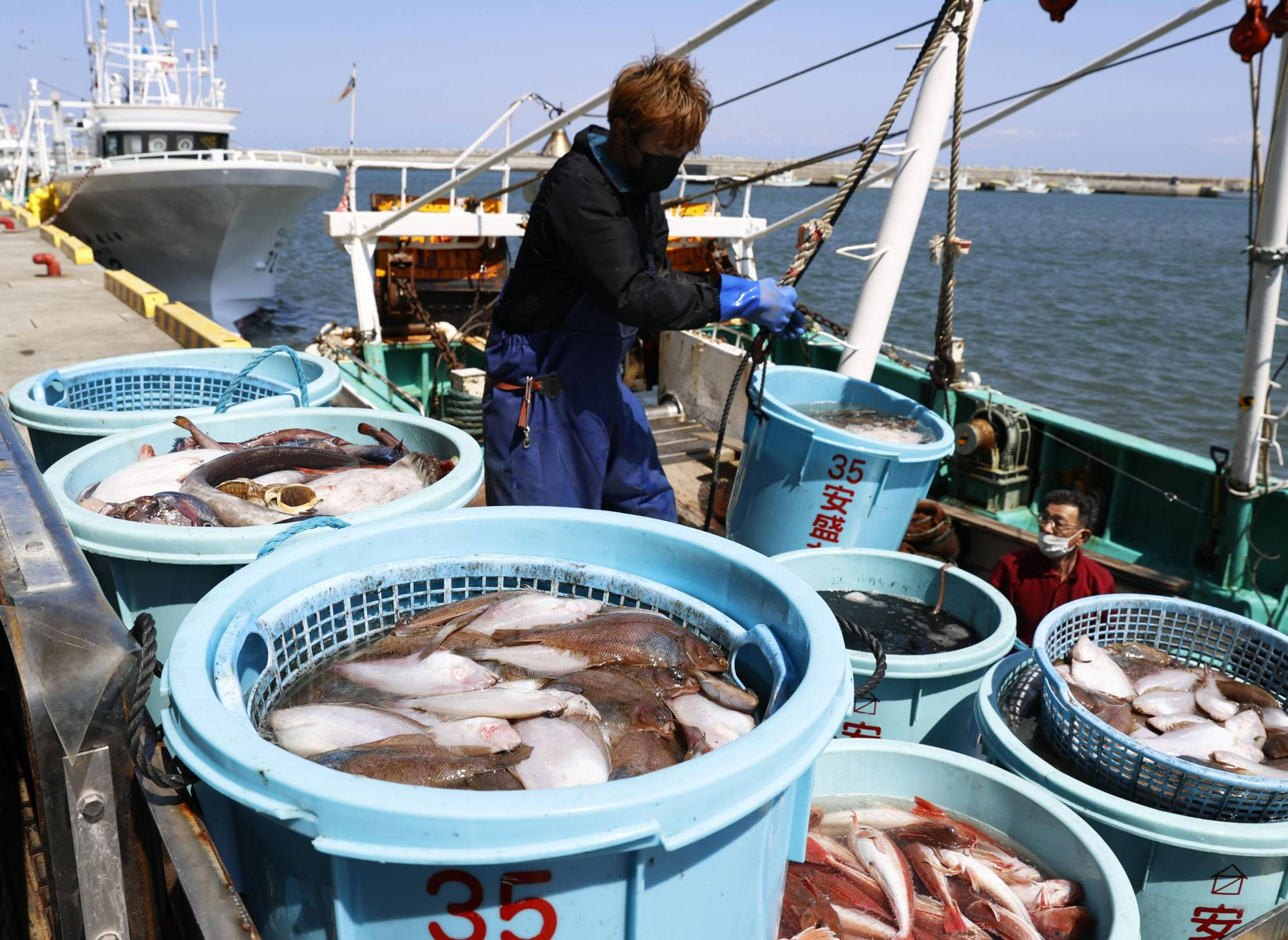 The government has said it will buy Fukushima seafood that is left unsold following the release of treated radioactive water from the stricken Fukushima No. 1 nuclear power plant. | KYODO